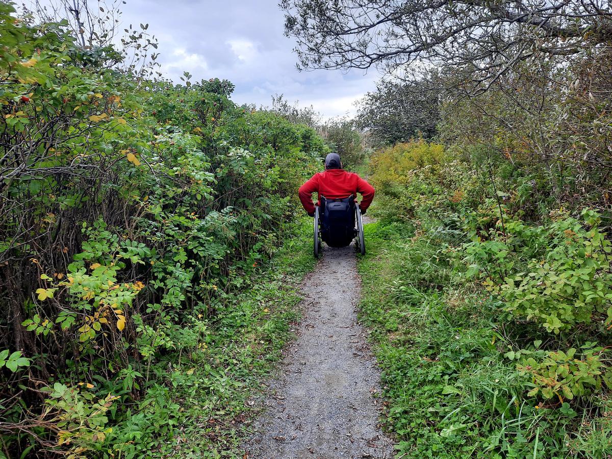 The trail width before the boardwalk. Photo credit: Enock Glidden