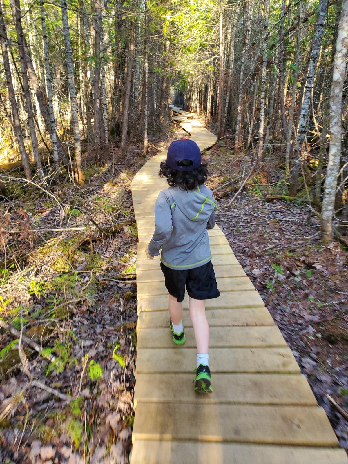 Checking out WFLT's Half Witt Trail boardwalk. Photo credit: Brendan Schauffler