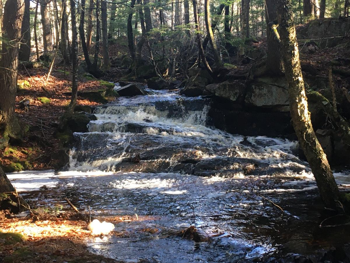 Waterfall at Frenchman Bay Conservancy's Schoodic Bog preserve