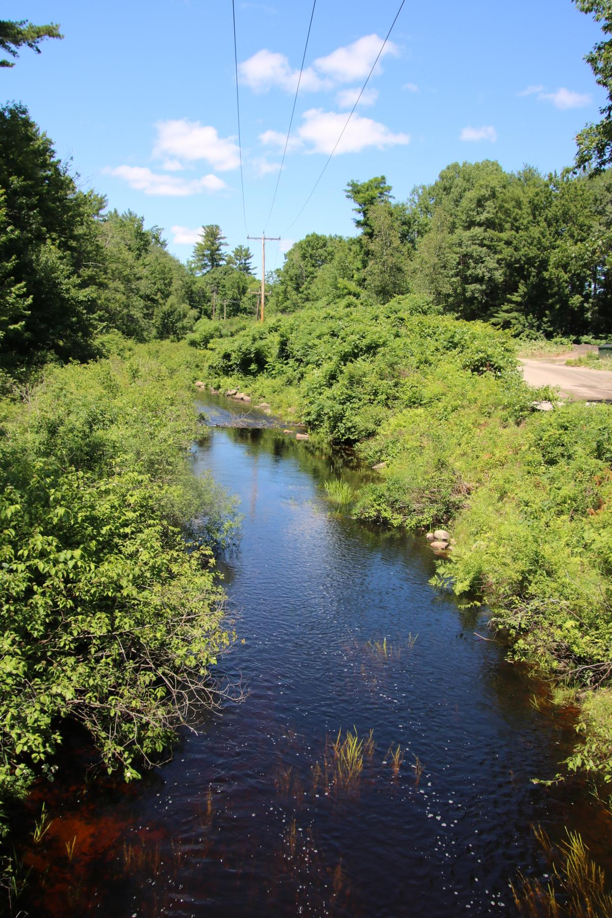 A view of Willet Brook.