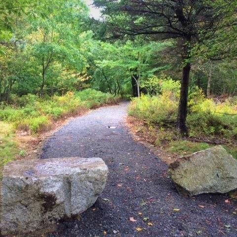 Boulders at trail entrance.