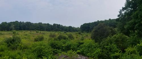 Enock's Adventures: Pleasant Hill Preserve
