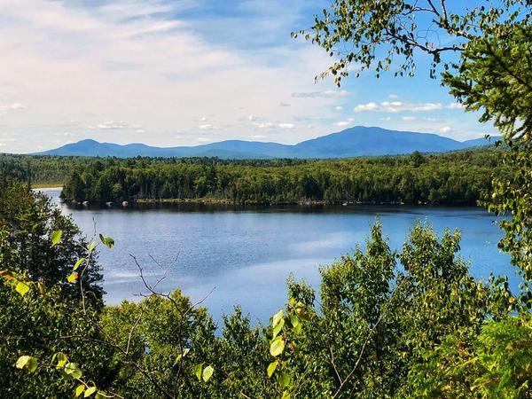 Prong Pond Trail Stewardship Day