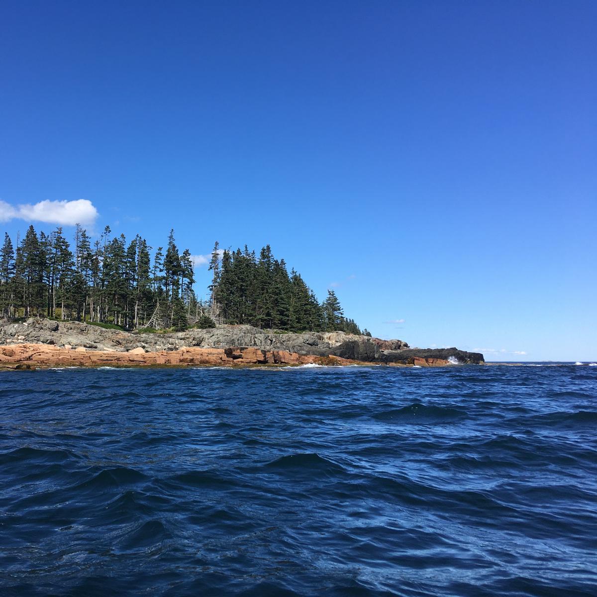 Mid-sized waves crash on a rocky peninsula.
