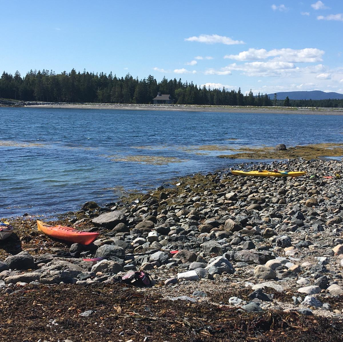 Two kayaks are pulled up on a rocky beach.