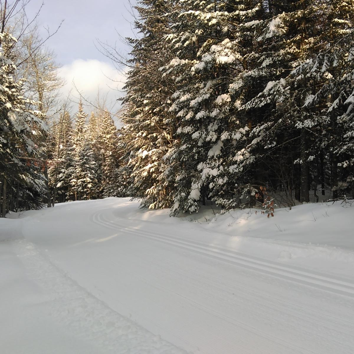 A wide ski trail with a section for skating and a groomed track.