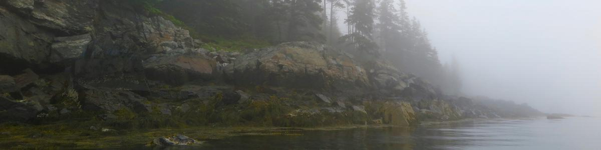 A rocky peninsula appears in the fog