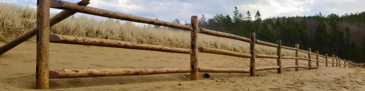 A fence lines the edge of a sandy beach-side trail