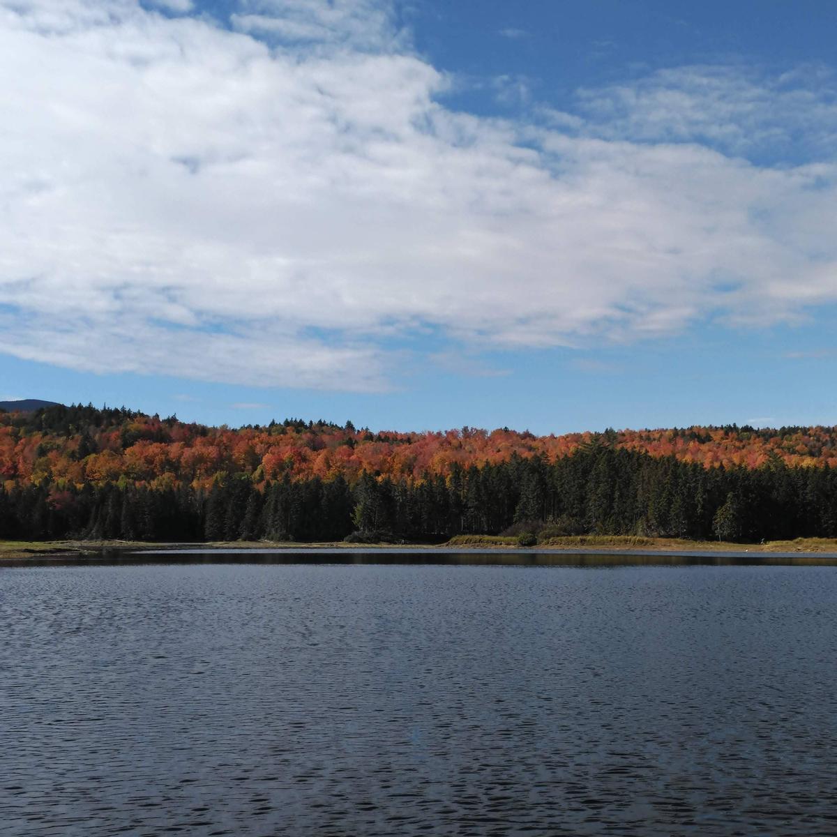 Breeze makes a slight riffle on a relatively calm lake