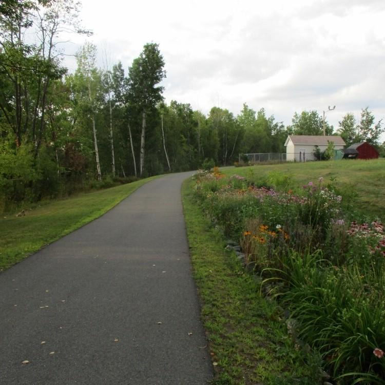 A paved trail passes by flowers
