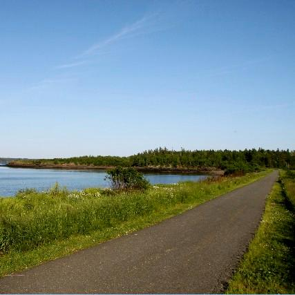 A flat, paved trail goes by a calm bay