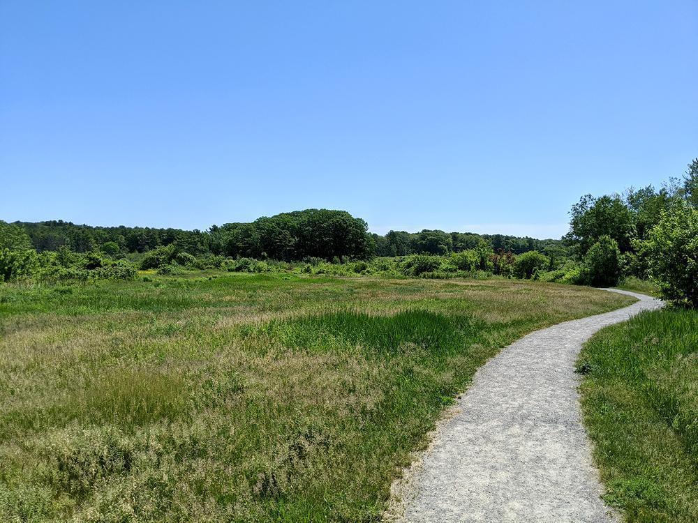 Pleasant Hill Preserve. Photo credit: Michael Hanson