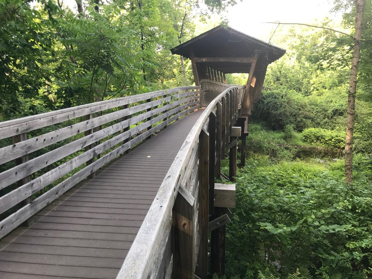 Maine is full of trails with interesting features like this covered walkway at Pondicherry Park in Bridgton