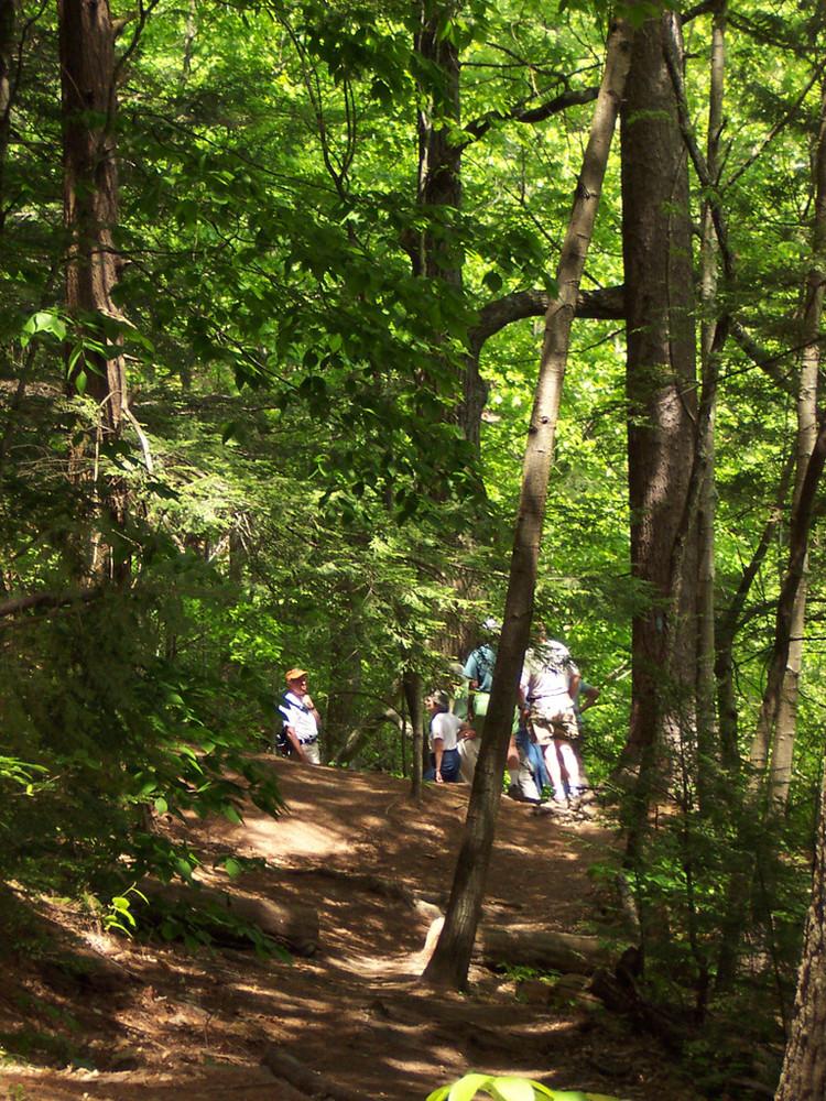 Trail (Credit: Portland Trails)