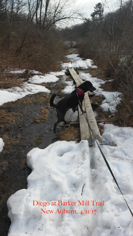 Barker Mill Trail