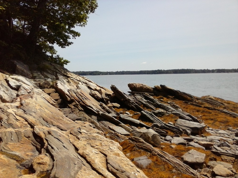 View from the rocky shore. (Credit: Chris Nason)