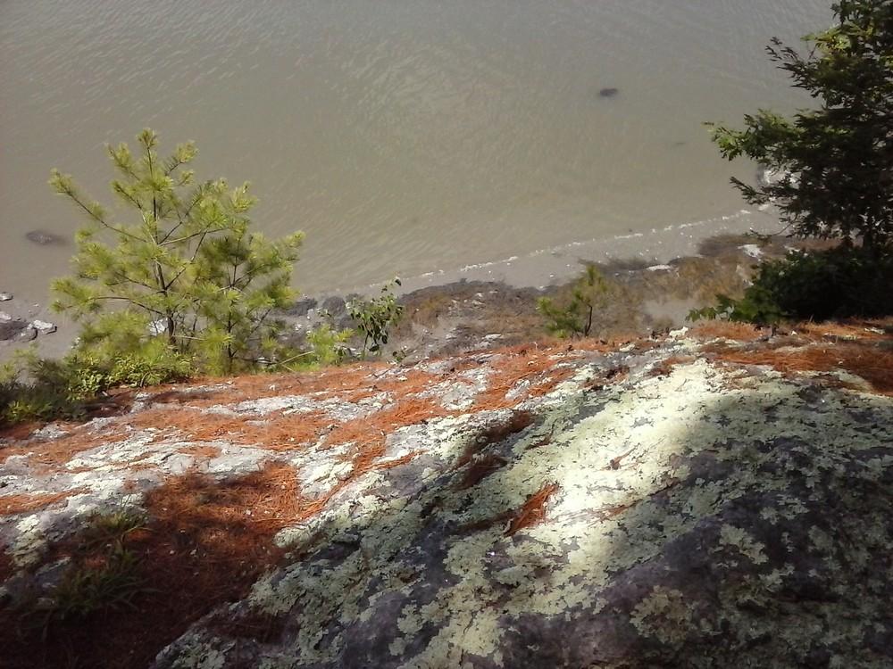 Overlooking the cliffs on the  Harraseeket Trail. (Credit: Chris Nason)