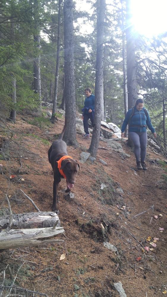 Hikers enjoying the Rock Castle Loop (Credit: Gabe Perkins)