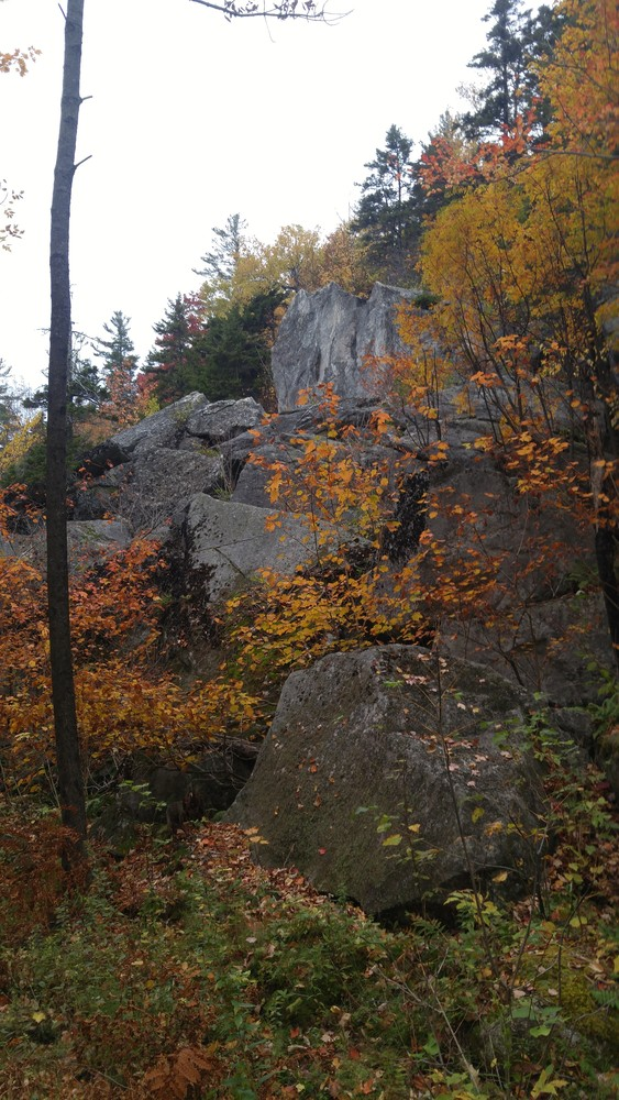Rocky outcropping along the Rock Castle Loop (Credit: Gabe Perkins)