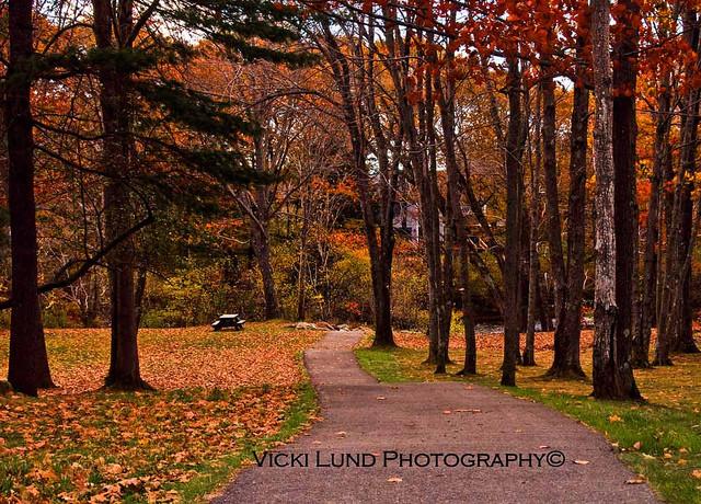 Park Path (Credit: Vicki Lund Photography)