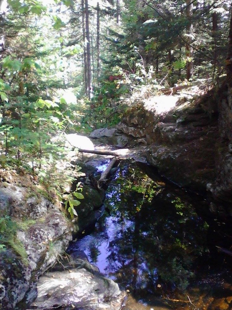The main stream that crosses the trail numerous times (Credit: Lisa C)