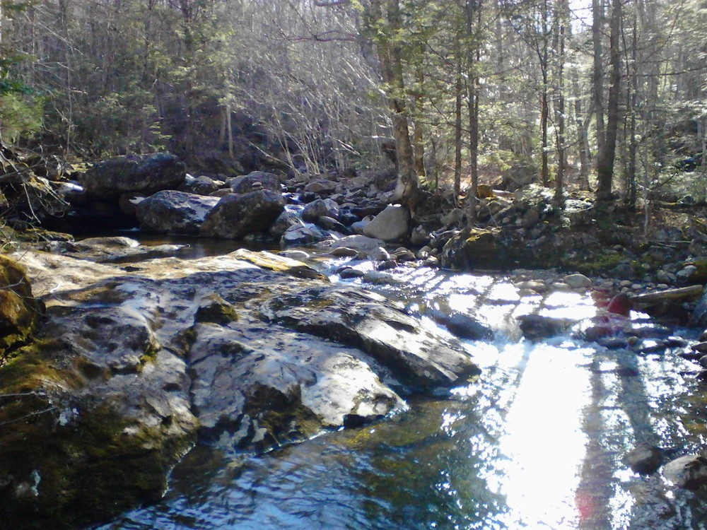 Just a beautiful bend in the stream, a great spot to stop and rest since the trail and water are so close, some nice rocks to sit on and trees to provide shade (Credit: Lisa C)