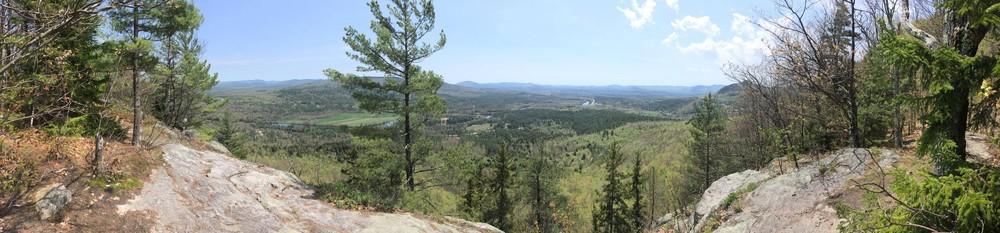 South Cliffs view (Credit: Robert Ratford)