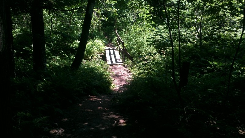 A bridge along the trail (Credit: Jean-Luc Theriault)