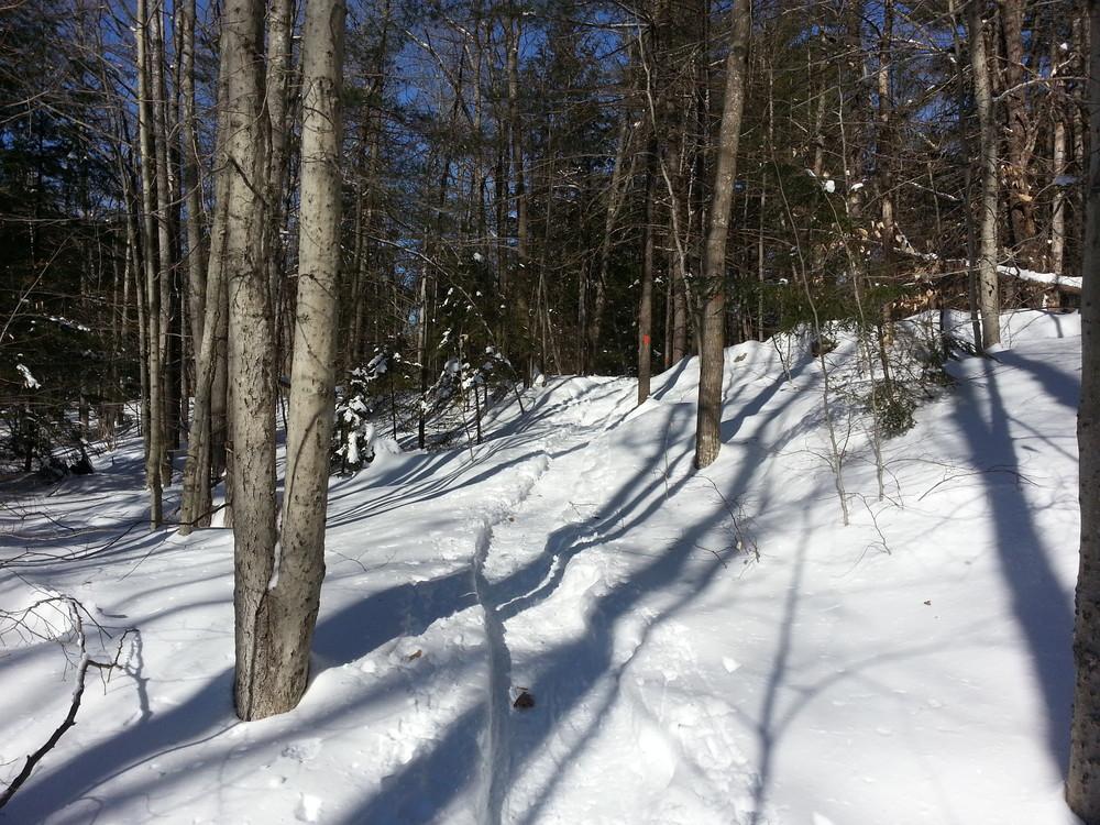 Bradbury Mountain State Park - Hiking Trails