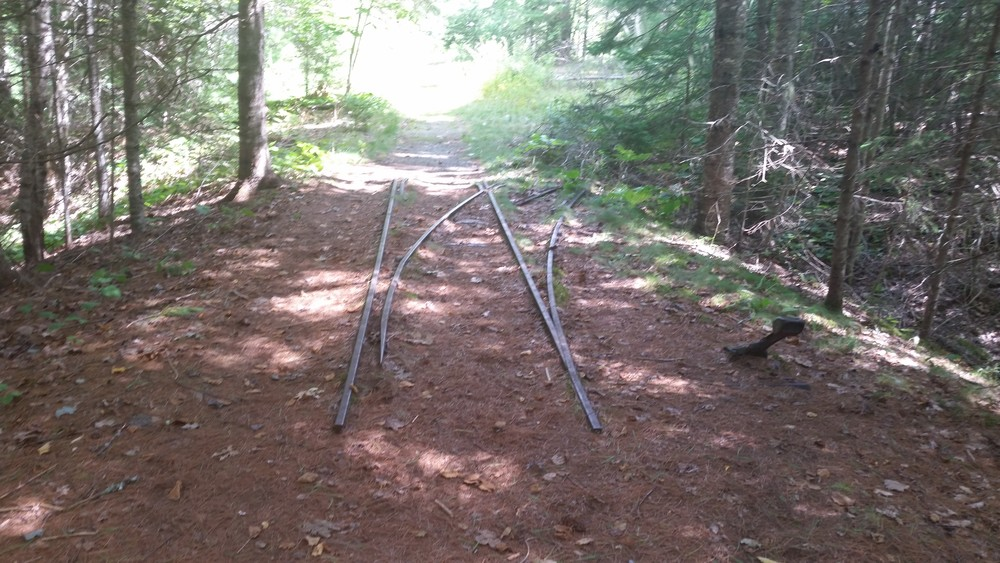 Old Tracks (Credit: Curtis Libby)