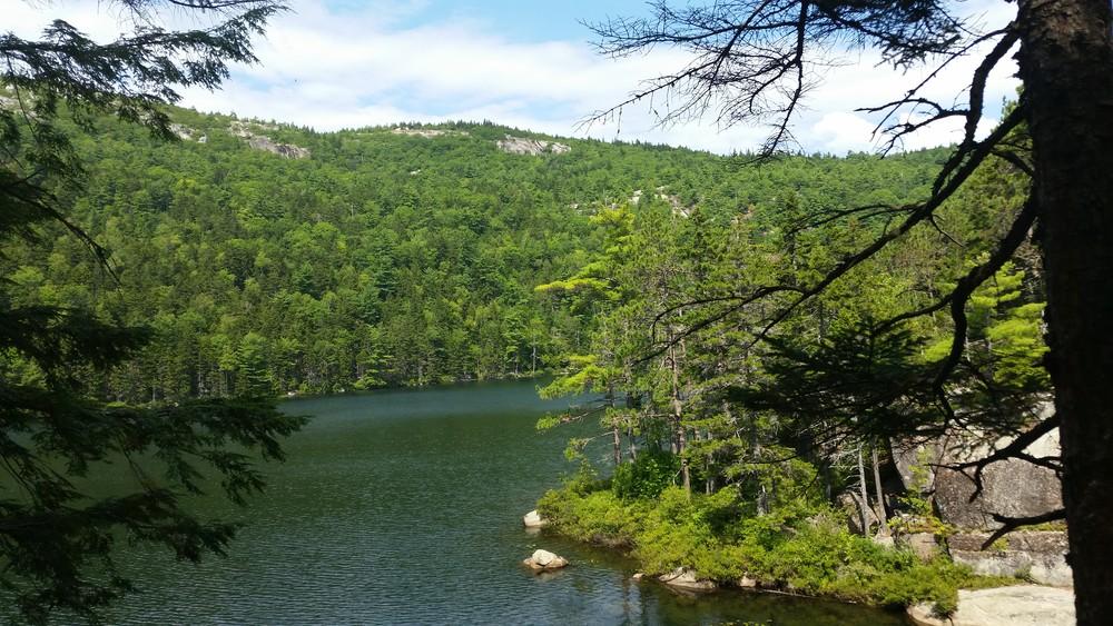 Salmon Pond (Credit: Curti)