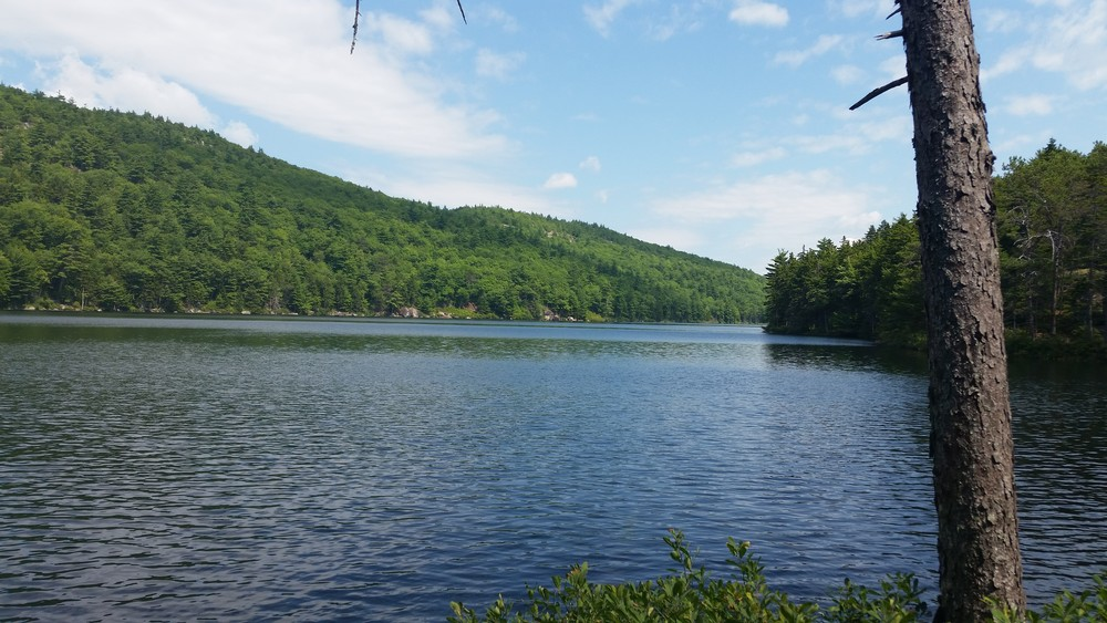 Little Long Pond (Credit: Curtis Libby)