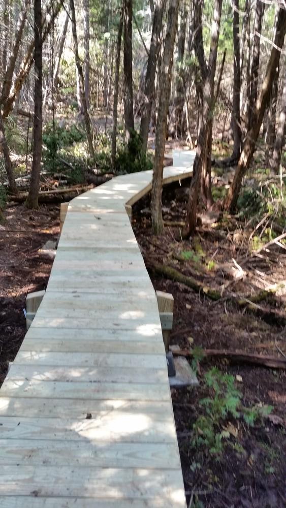 Bog bridging on Witt Swamp Extension (Credit: Western Foothills Land Trust)