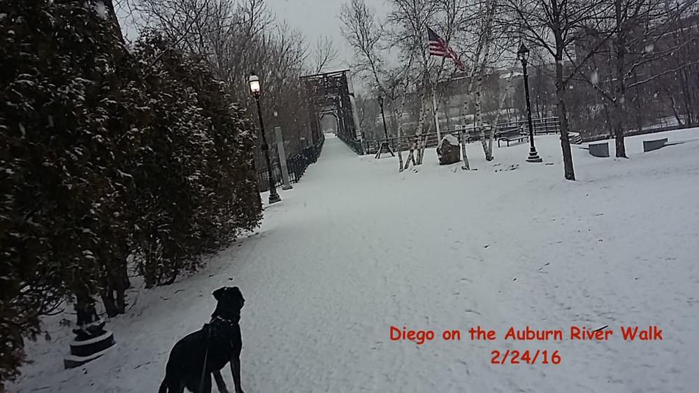 Lewiston-Auburn Greenway Trails