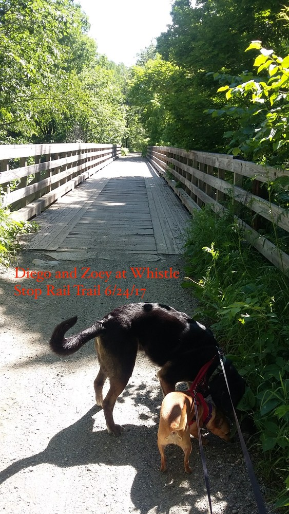 Whistle Stop Trail