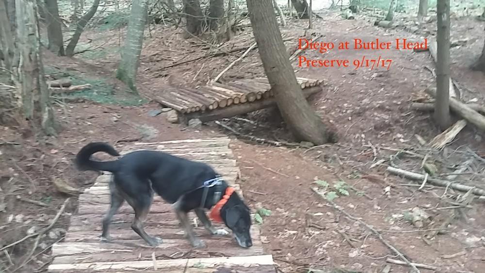 Butler Head Preserve Trails