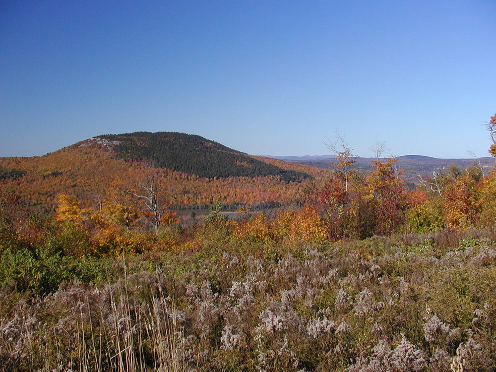 View from Mountain View Trail (Credit: Great Pond Mountain Conservation Trust)
