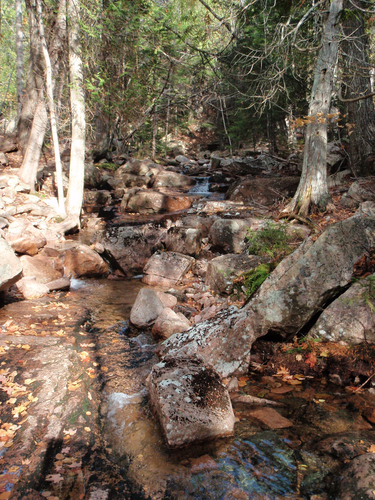 A. Murray Young Path (Credit: National Park Service)
