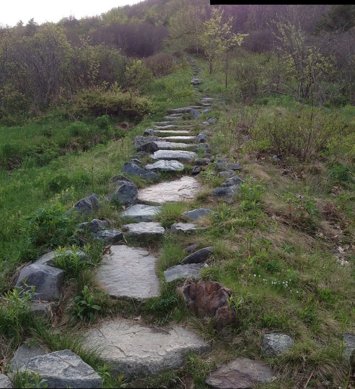 Stone stairs on Blue Hill Mountain (Credit: Blue Hill Heritage Trust)