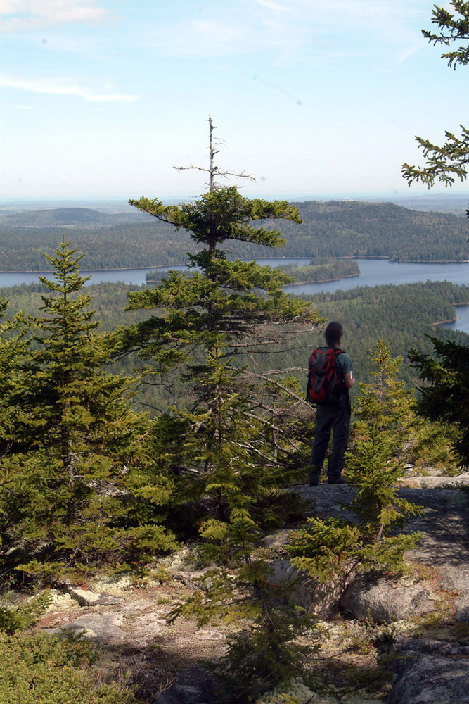 Big Chief Trail (Credit: Maine Bureau of Parks and Lands)