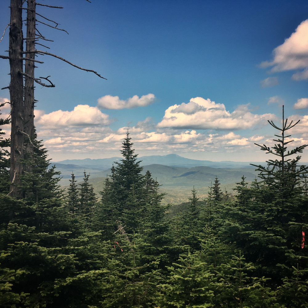 Looking towards Katahdin from the upper reaches of the Baker Mountain Trail (Credit: ME BPL)