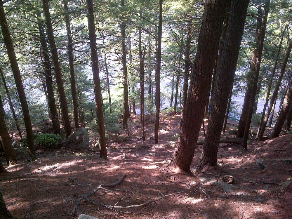 View down to Narrows Trail from Overlook Trail (Credit: Terry Spies, 2015)