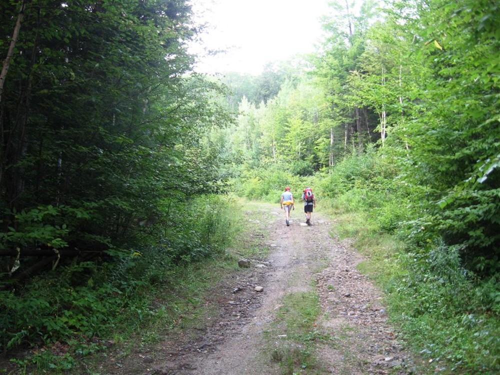 Beginning of the Trail (Credit: Landon Fake)