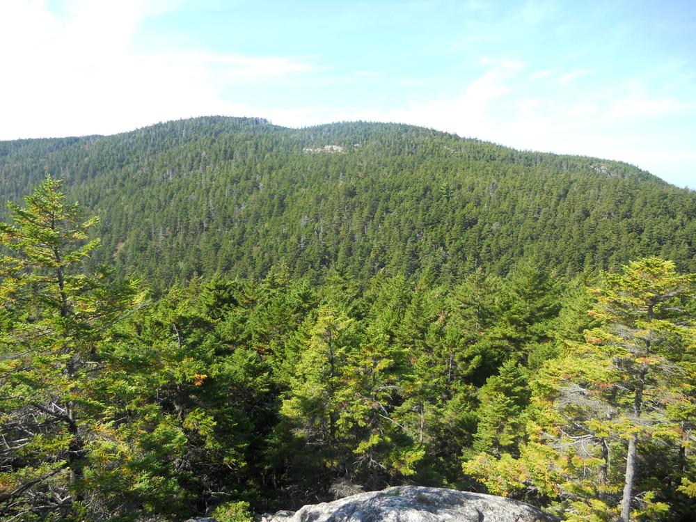 Bernard Mountain from Razorback Trail (Credit: National Park Service)