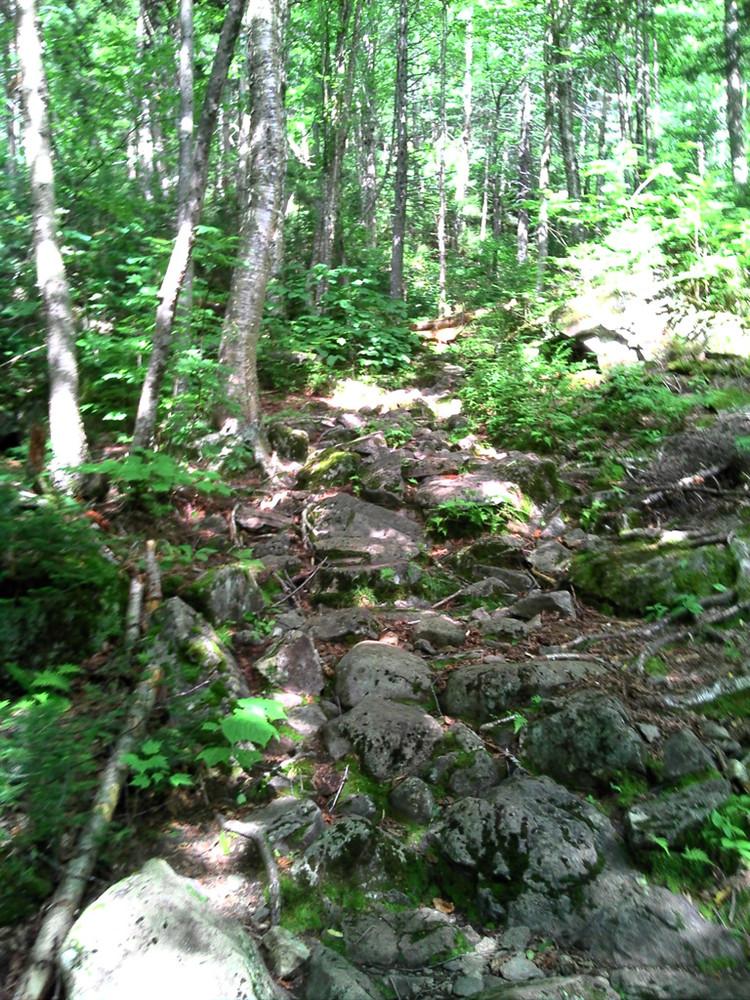 Rocky, Rough Path (Credit: Maine Bureau of Parks and Lands)