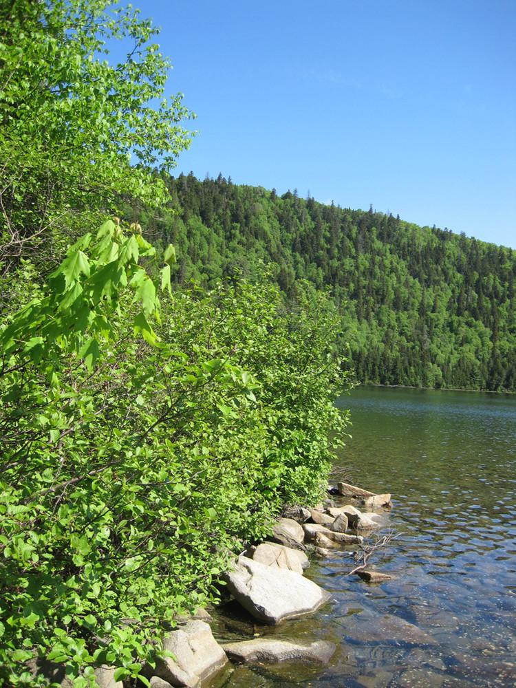 Black Mountain behind Black Pond (Credit: Bill Geller)