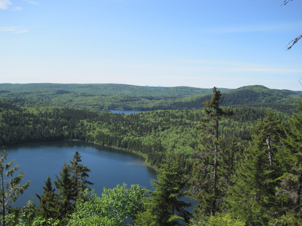 Black Pond from Lookout (Credit: Bill Geller)