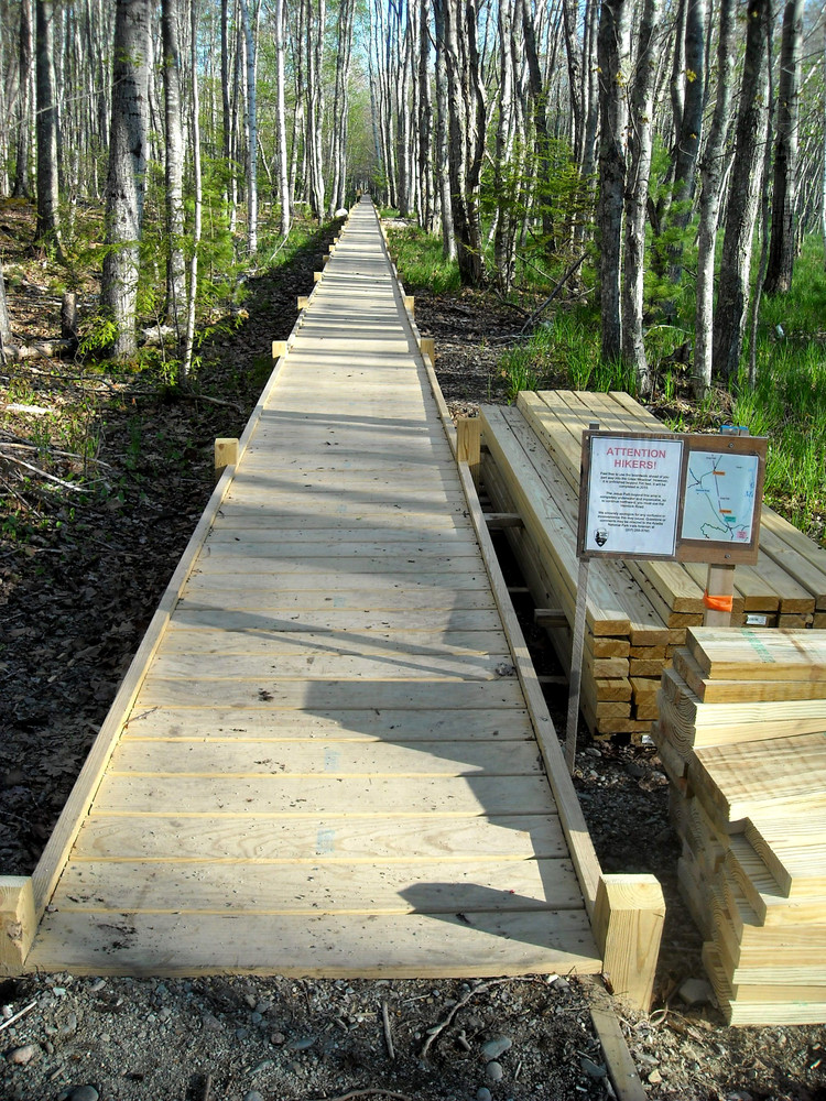 Boardwalk Along the Jesup Path (Credit: National Park Service)