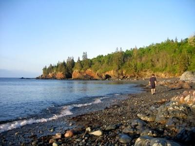 Bog Brook Cove (Credit: Maine Coast Heritage Trust)