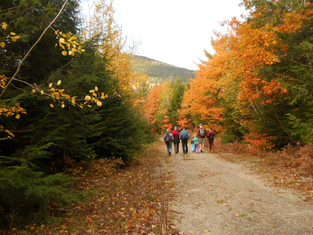 Hothole Brook Trail (Credit: Great Pond Mountain Conservation Trust)